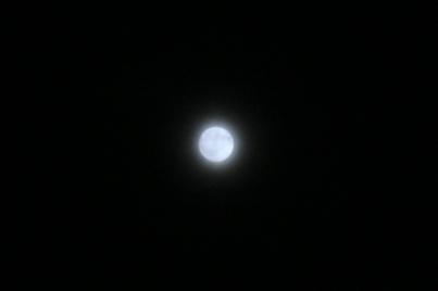 0816-4.JPG