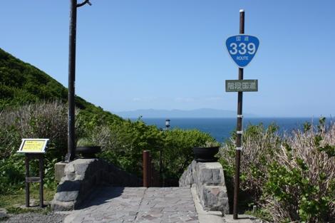 339-1.jpg